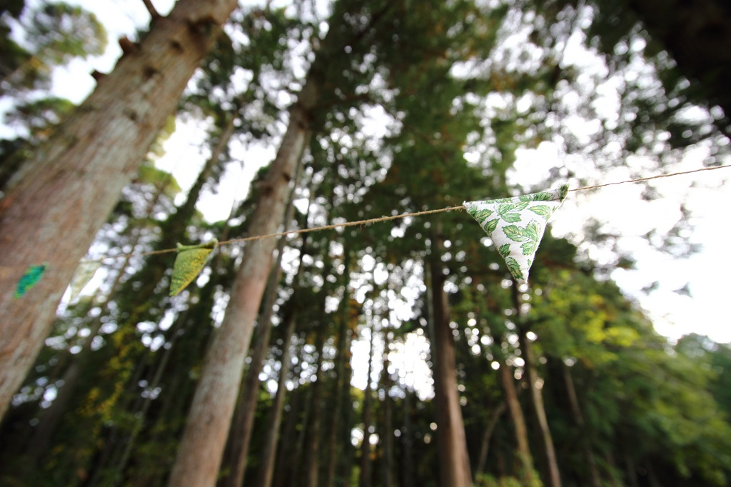 AUTUM WEDDING|NENOUWASA/ねのうわさ