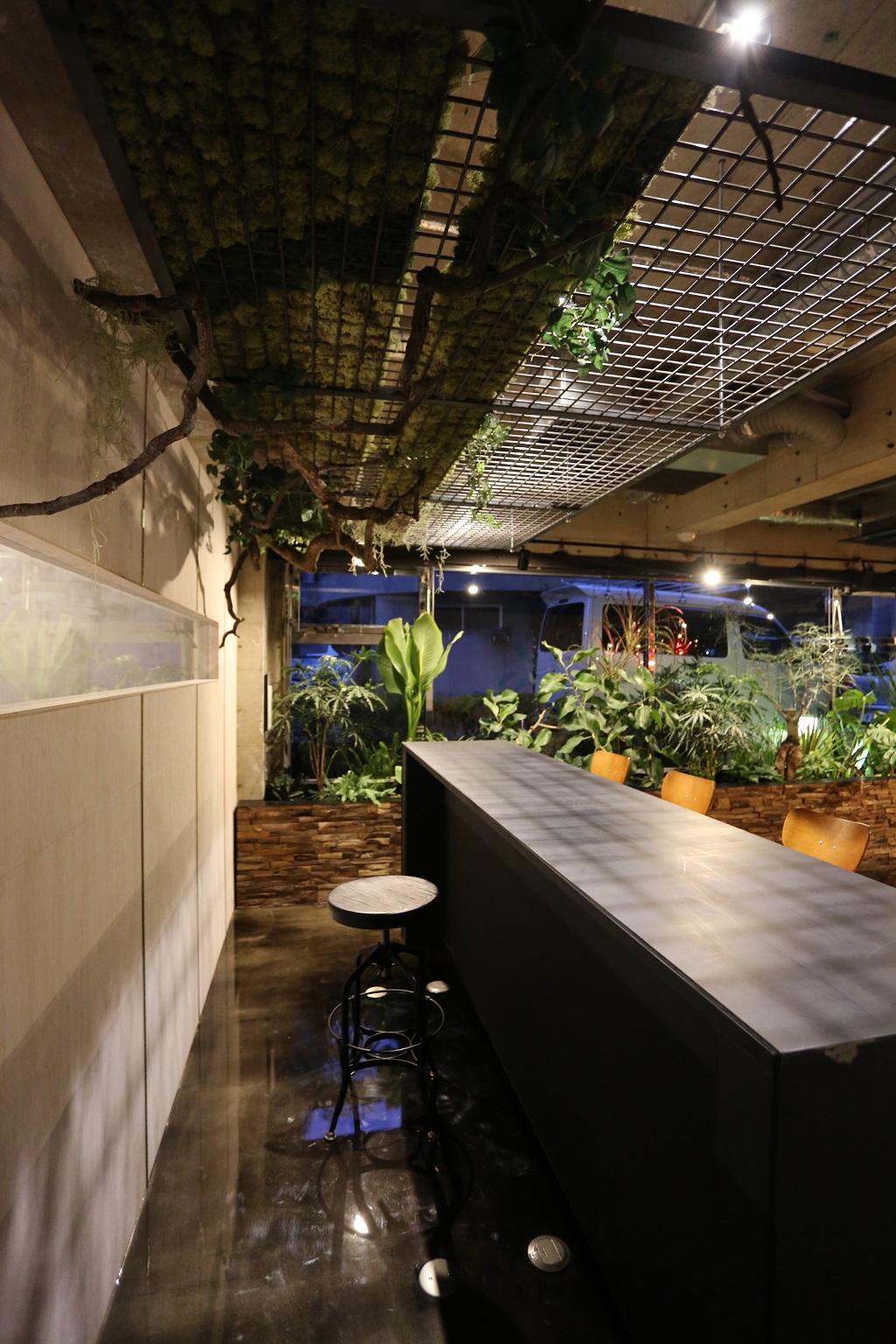 ISLAND PLANTING|NENOUWASA/ねのうわさ
