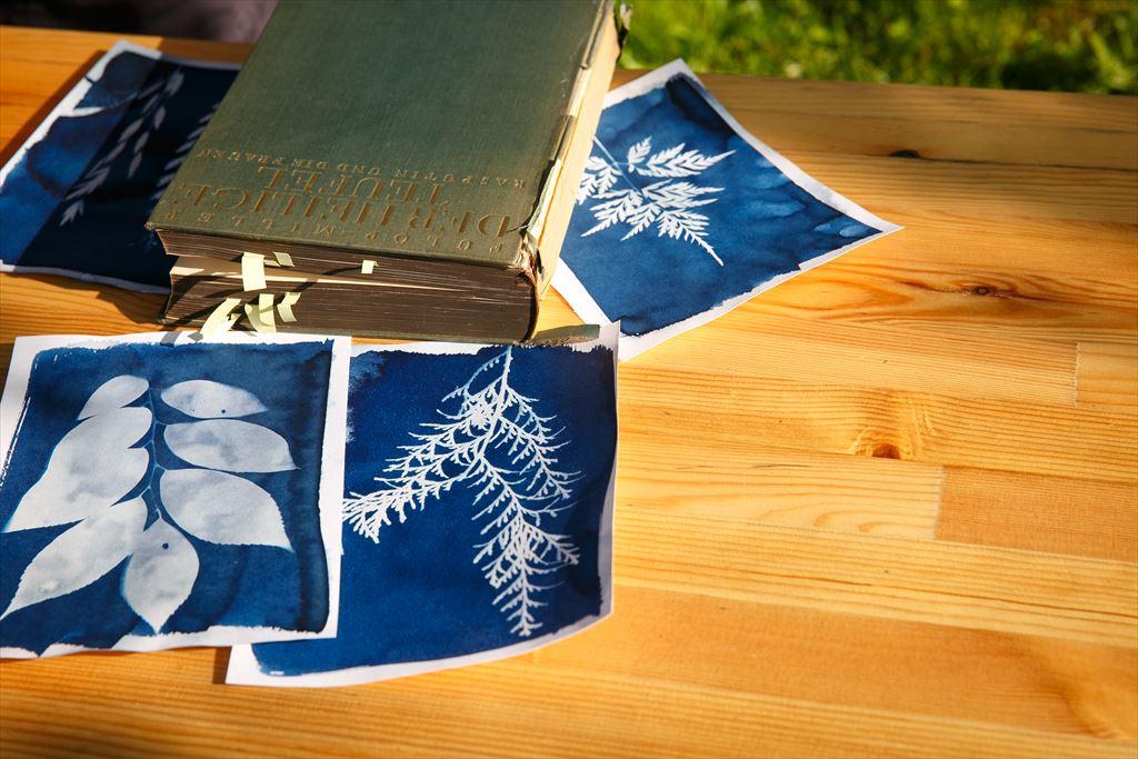 集落丸山でのピクニック ウェディング|NENOUWASA/ねのうわさ