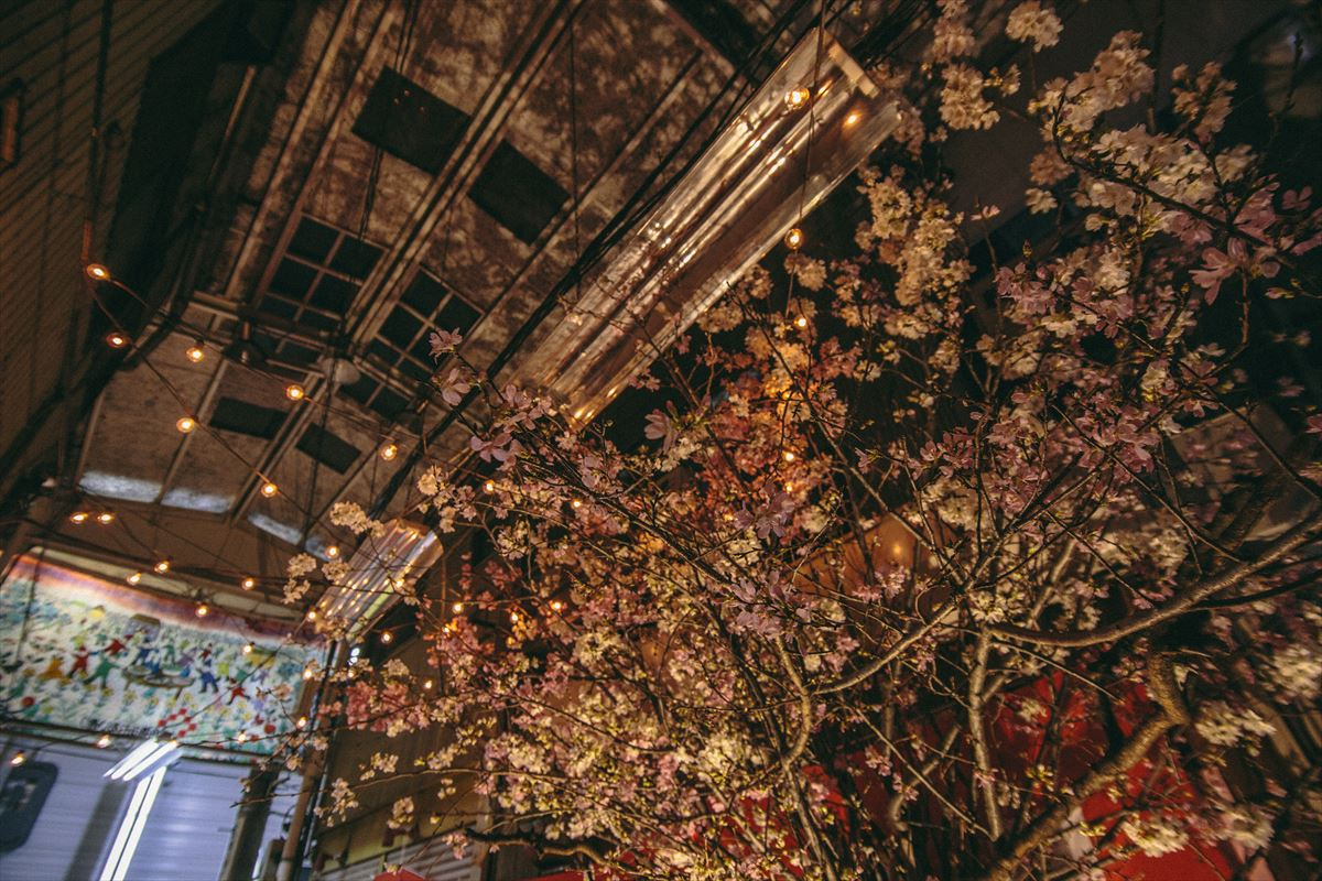お花見商店街|NENOUWASA/ねのうわさ