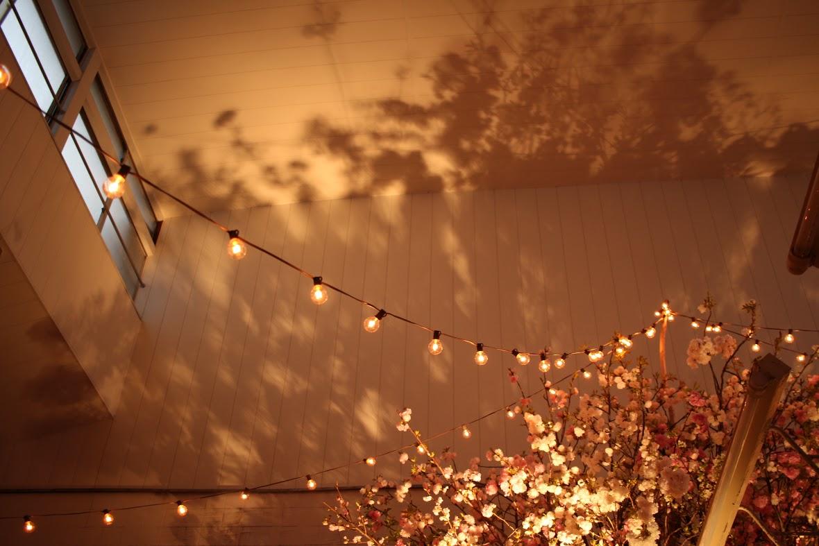 銭湯花見祭2015|NENOUWASA/ねのうわさ