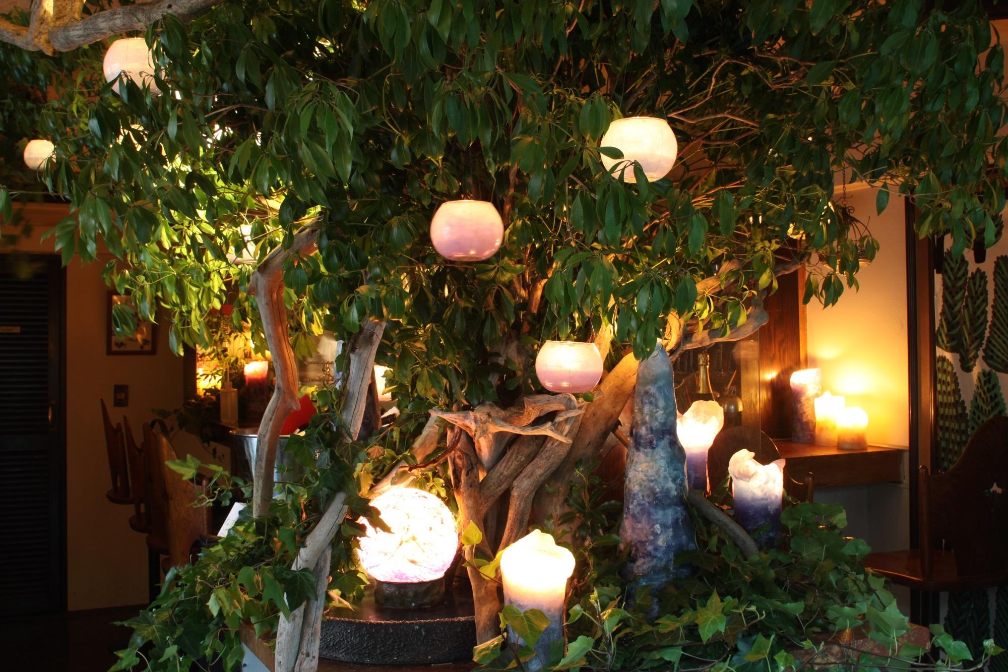 四谷バル 2nd Anniversary |NENOUWASA/ねのうわさ