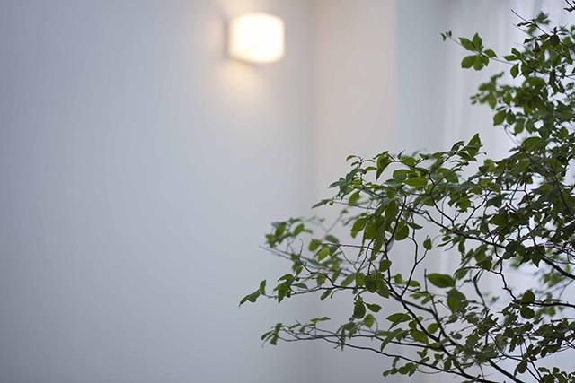HOUSE WEDDING|NENOUWASA/ねのうわさ