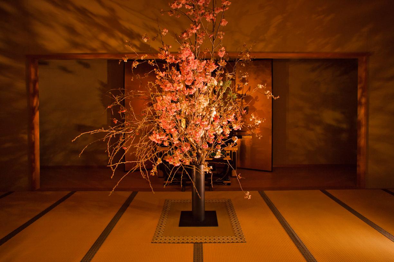 極楽なひととき in 増上寺|NENOUWASA/ねのうわさ