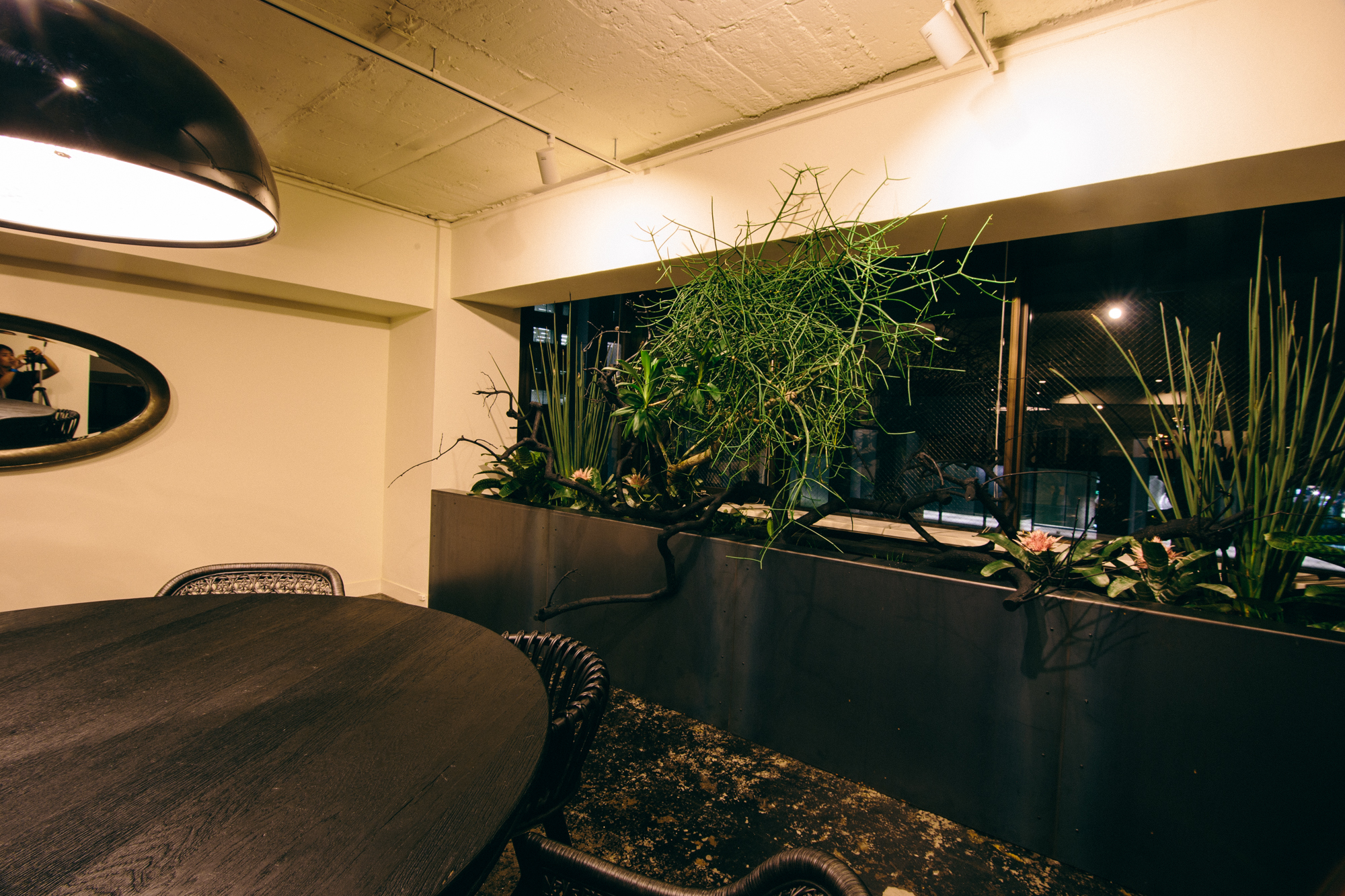 Office Planting|NENOUWASA/ねのうわさ