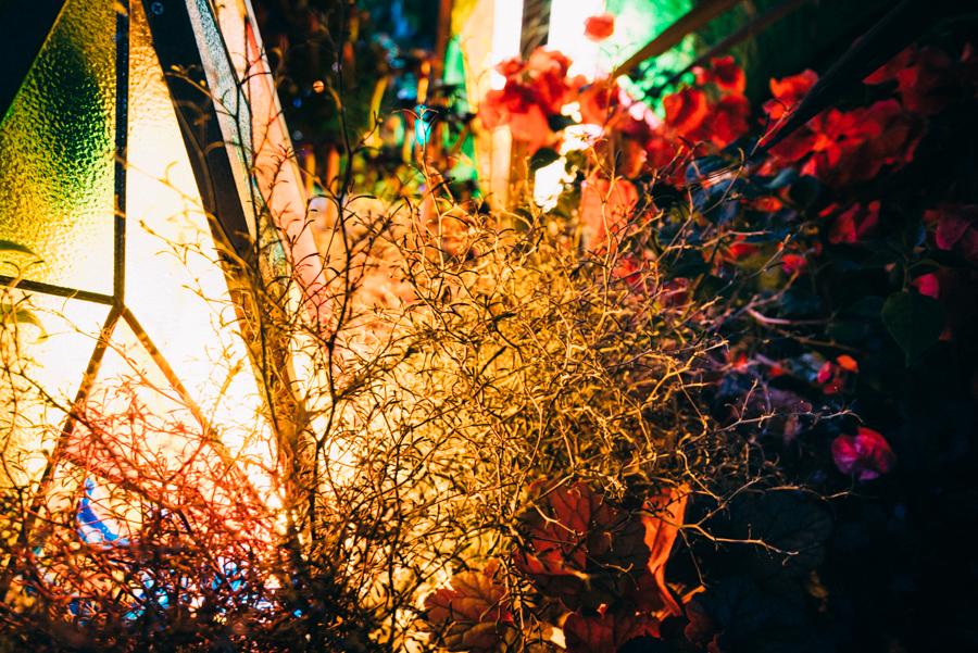 Botanical Decoration|NENOUWASA/ねのうわさ