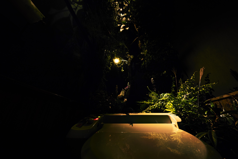 花とトイレ|NENOUWASA/ねのうわさ