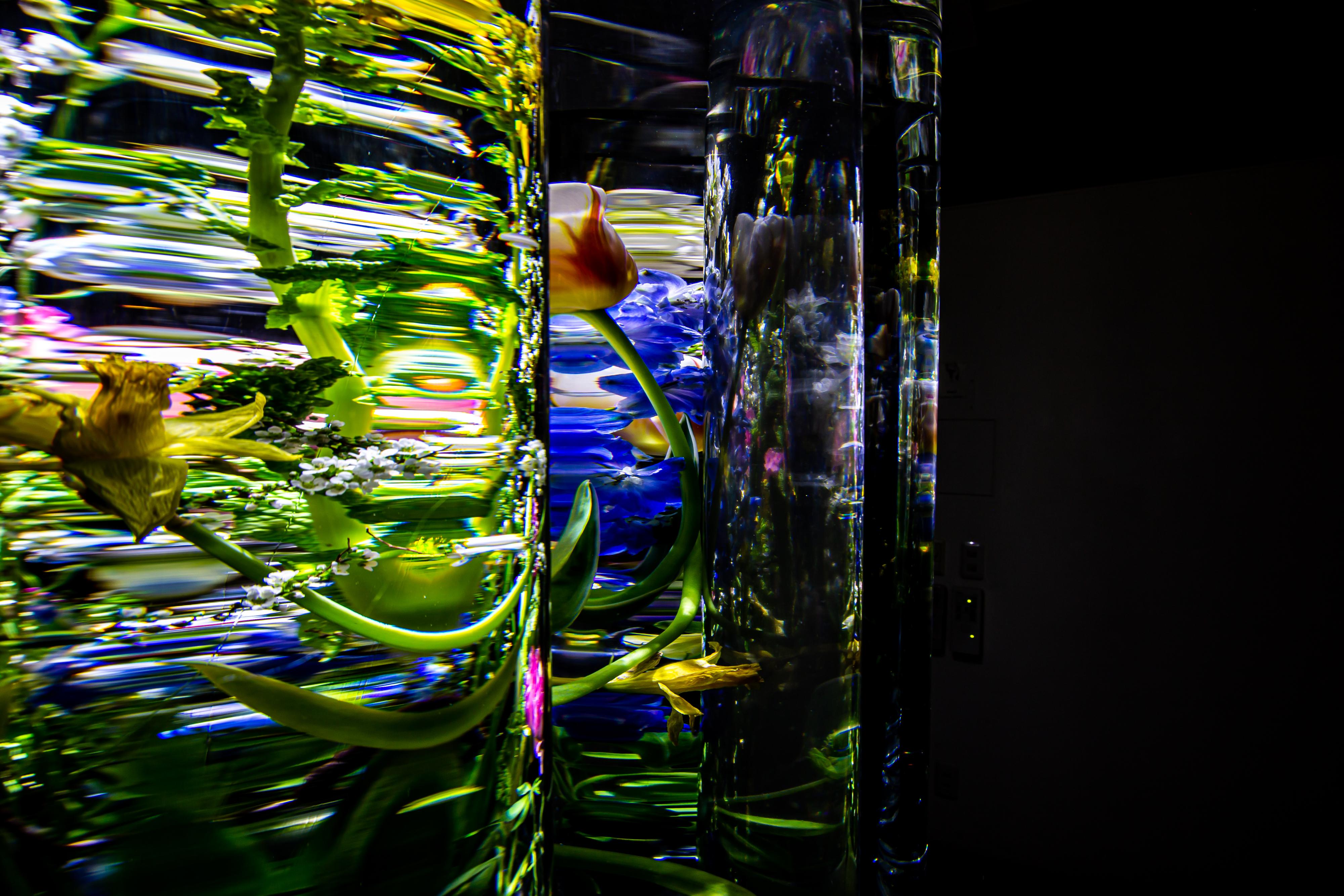 関係「動き」 ~展示「ただの」~|NENOUWASA/ねのうわさ